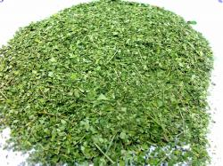 Ground moringa leaves
