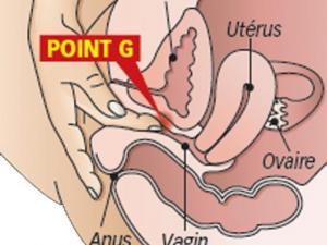Point g